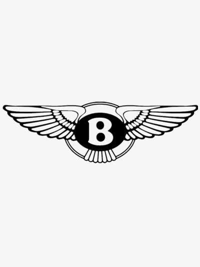 宾利logo翅膀不对称
