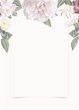 花卉照片边框背景