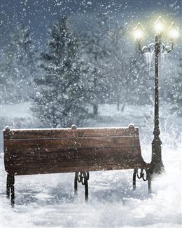 雪夜路灯图片