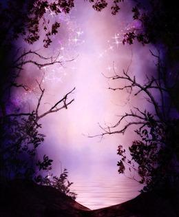 仙境森林图片