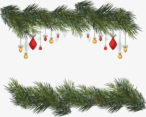 圣诞节松树枝边框