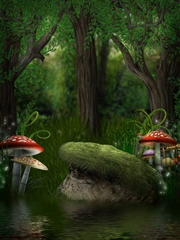 蘑菇森林插画图片