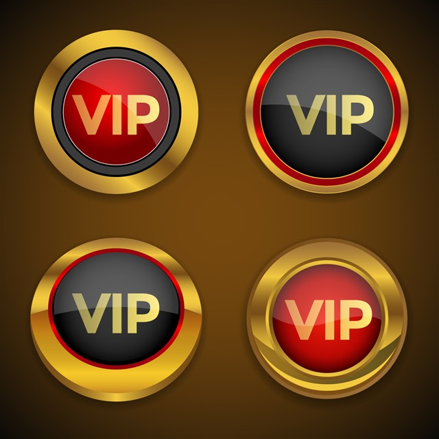 高端会员VIP标志