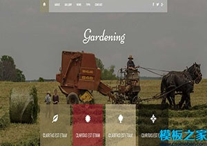 Gardening园艺花艺响应式web网站模板