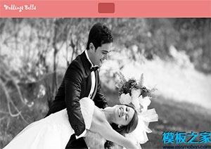 唯美粉色婚庆公司响应式网站