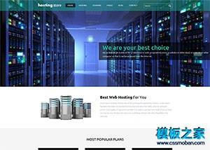 网络虚拟空间host企业网站模板