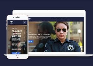安全网站模板