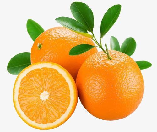 新鲜橙子水果图片