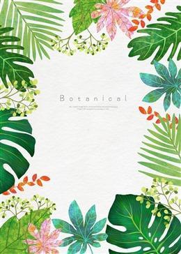 热带植物封面图