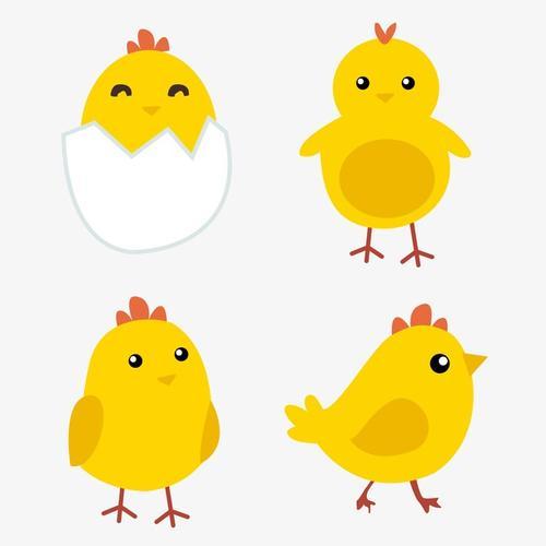 卡通小黄鸡矢量图