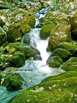 流水小溪风景壁纸