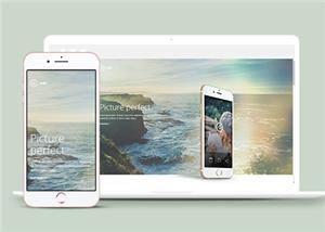 手机app软件网站