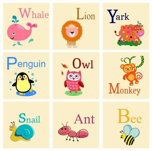 英语单词卡片