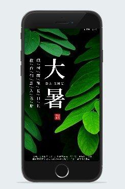 黑绿色大暑素材背景图片