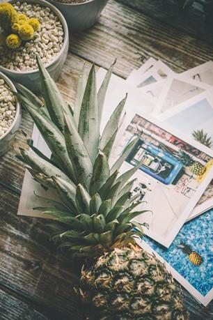 文艺风菠萝水果壁纸