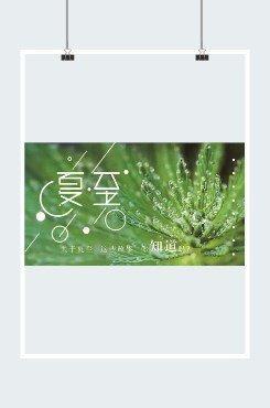 绿色植物夏至横版海报