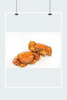 中秋大闸蟹图片