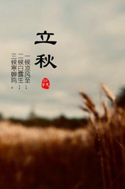 简约立秋节气海报图片