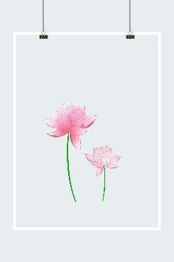 两支粉红色荷花