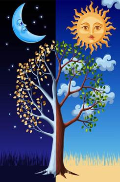 太阳月亮矢量图
