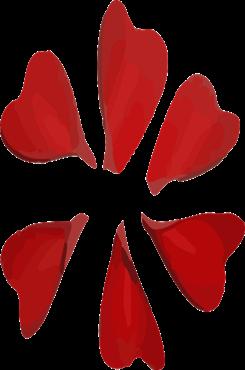 玫瑰花瓣免抠素材