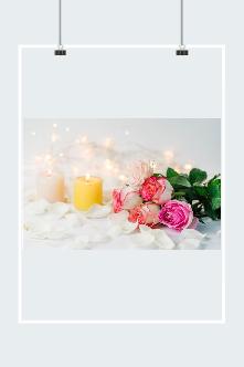 粉色玫瑰花摄影图片素材