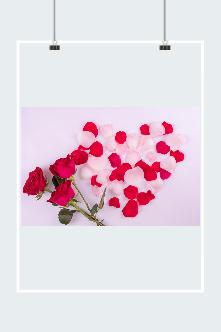 七夕节玫瑰花图片