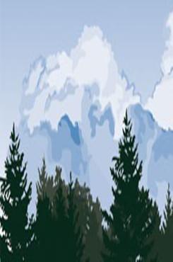 森林天空背景图片
