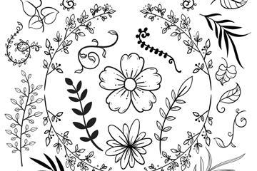 23款手绘树叶花卉矢量素材