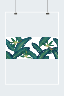 简约植物风背景图片