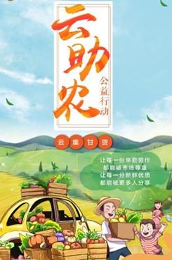 助农公益海报