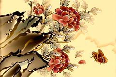 牡丹花矢量图片