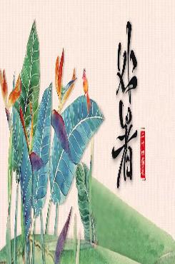 处暑中国风海报设计