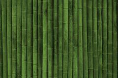 绿色竹子背景图片下载