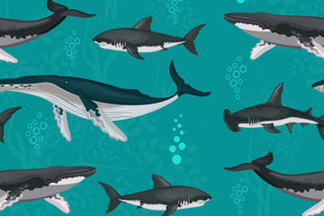 卡通鲨鱼鲸鱼无缝背景矢量图