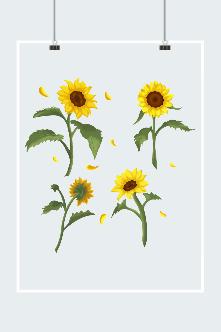 向日葵免扣元素