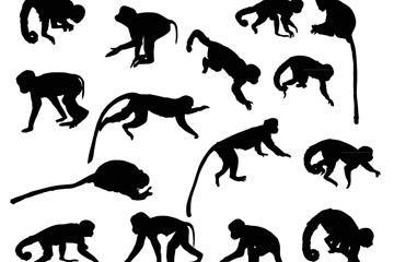 猴子剪影图片