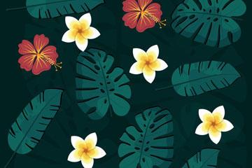 热带植物花卉背景图