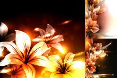 炫彩百合花卉背景图