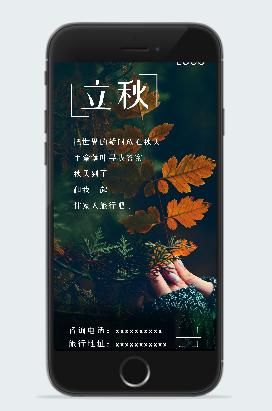 立秋节气摄影图海报