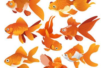 金鱼免抠图