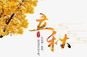 秋季元素插画