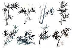 竹子水墨画矢量图