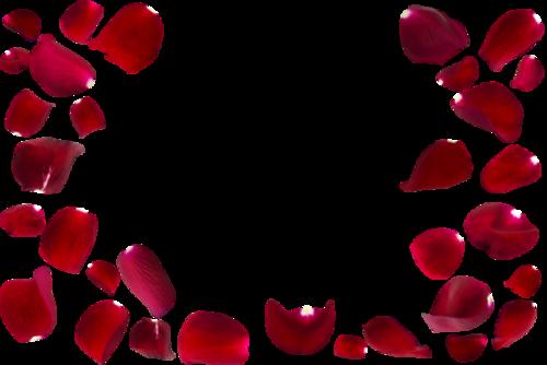 浪漫玫瑰花瓣装饰素材