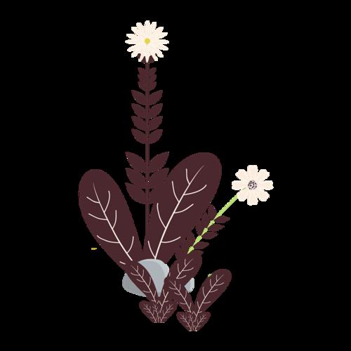 褐色花草素材