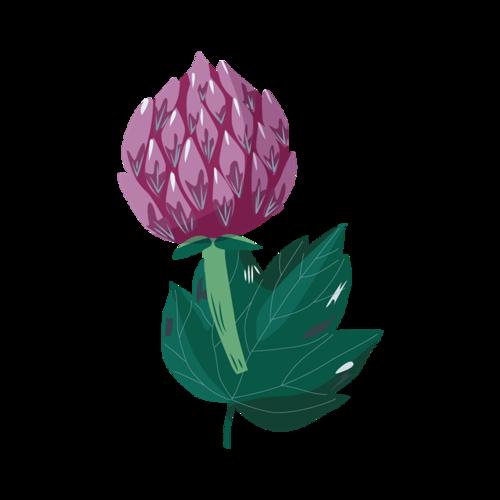 紫色花苞矢量素材