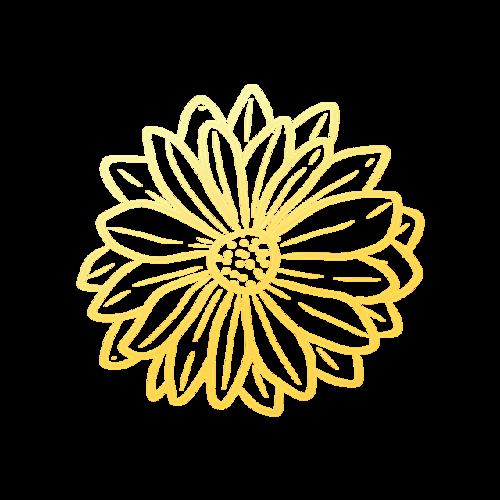 金边花朵元素