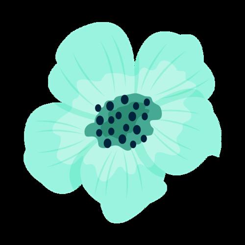 海棠花图片手绘