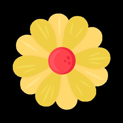 黄色鸡蛋花图片