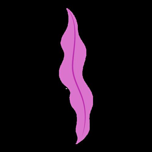 紫色海带图案